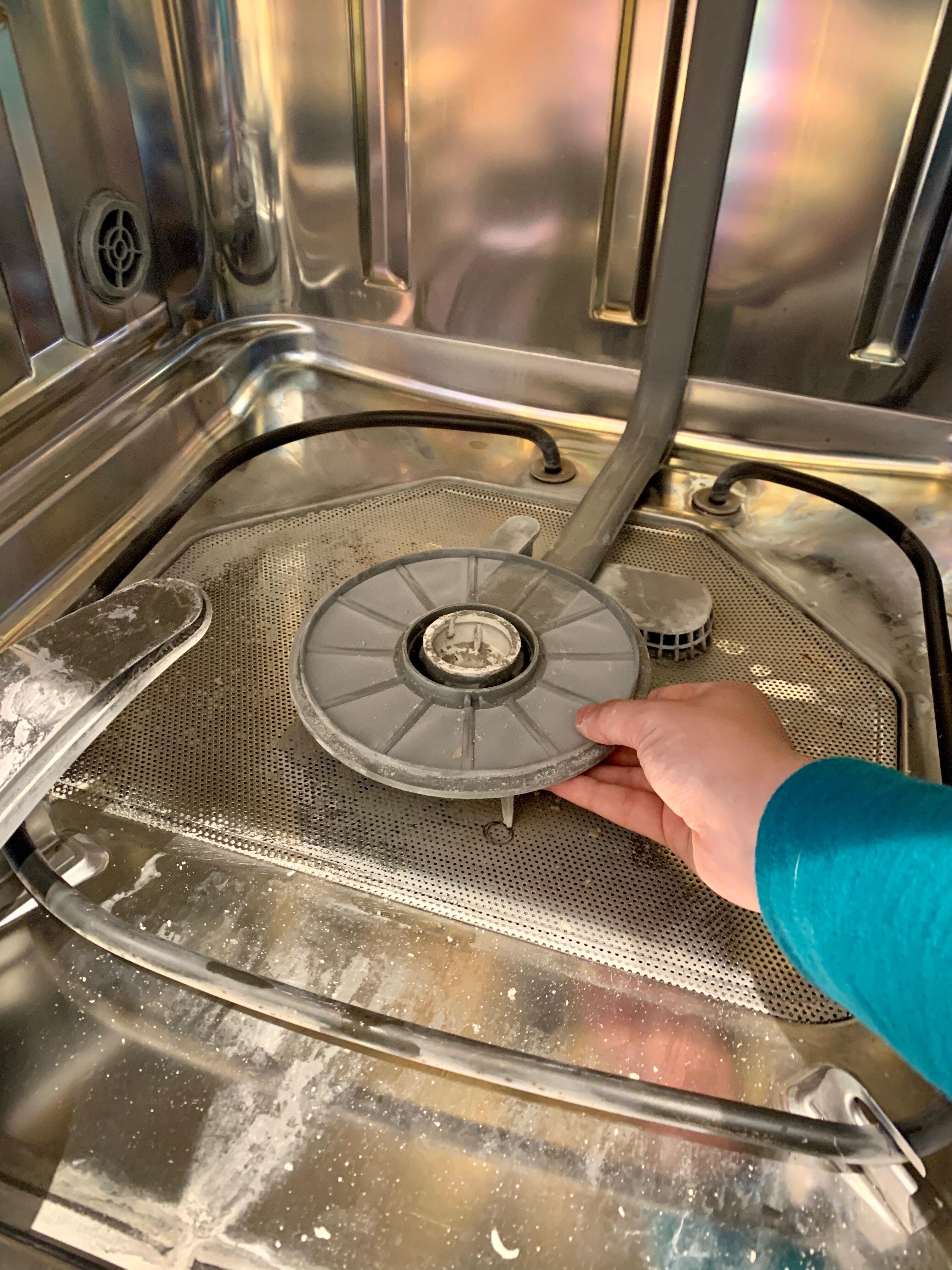 Dishwasher-clean-thin-filter.jpg