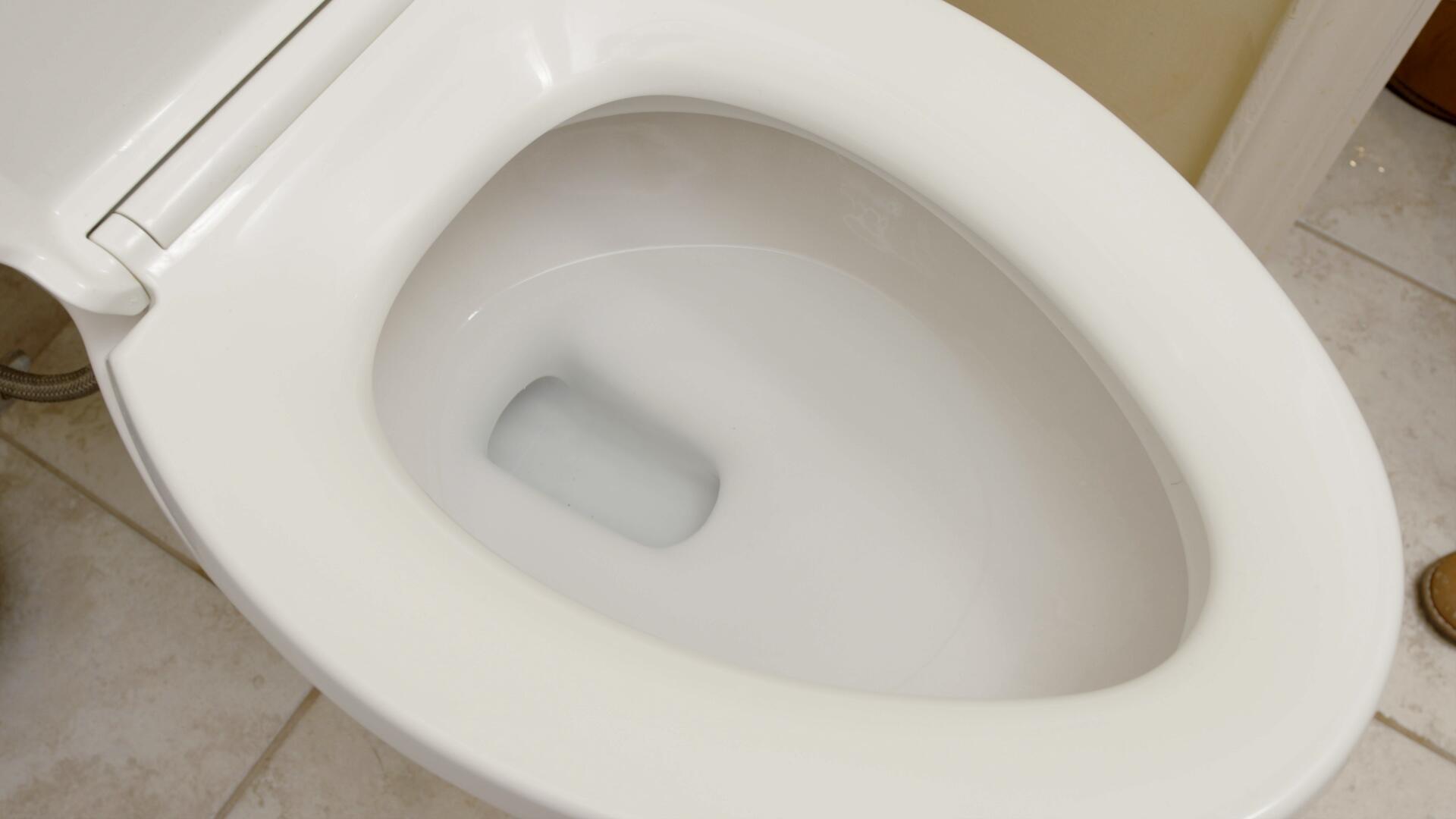 Toilet-Use-As-Normal.f1cb27a519bdb5b6ed34049a5b86e317.jpg