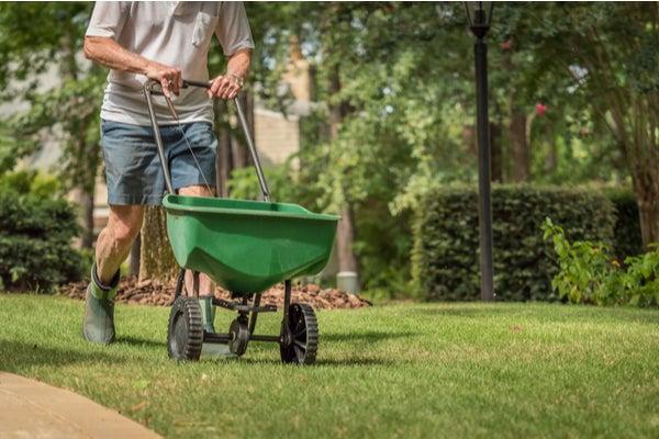 fertilize-yard.jpg