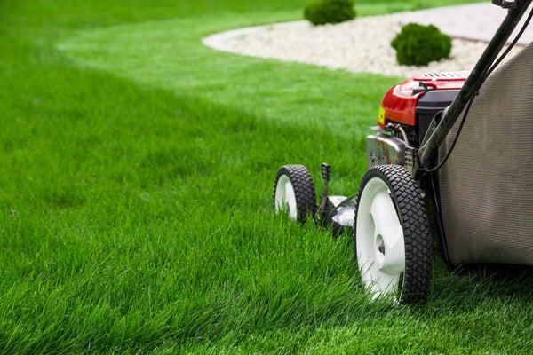mow-lawn.jpg