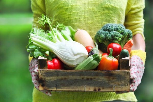 summer-veggies.jpg