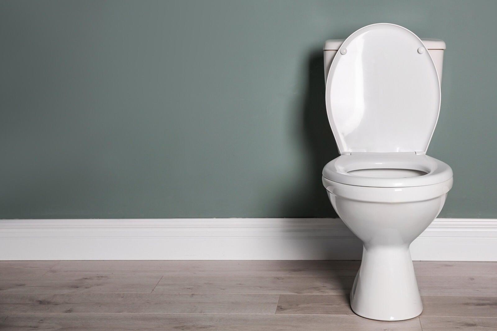 A clean toilet in a modern bathroom
