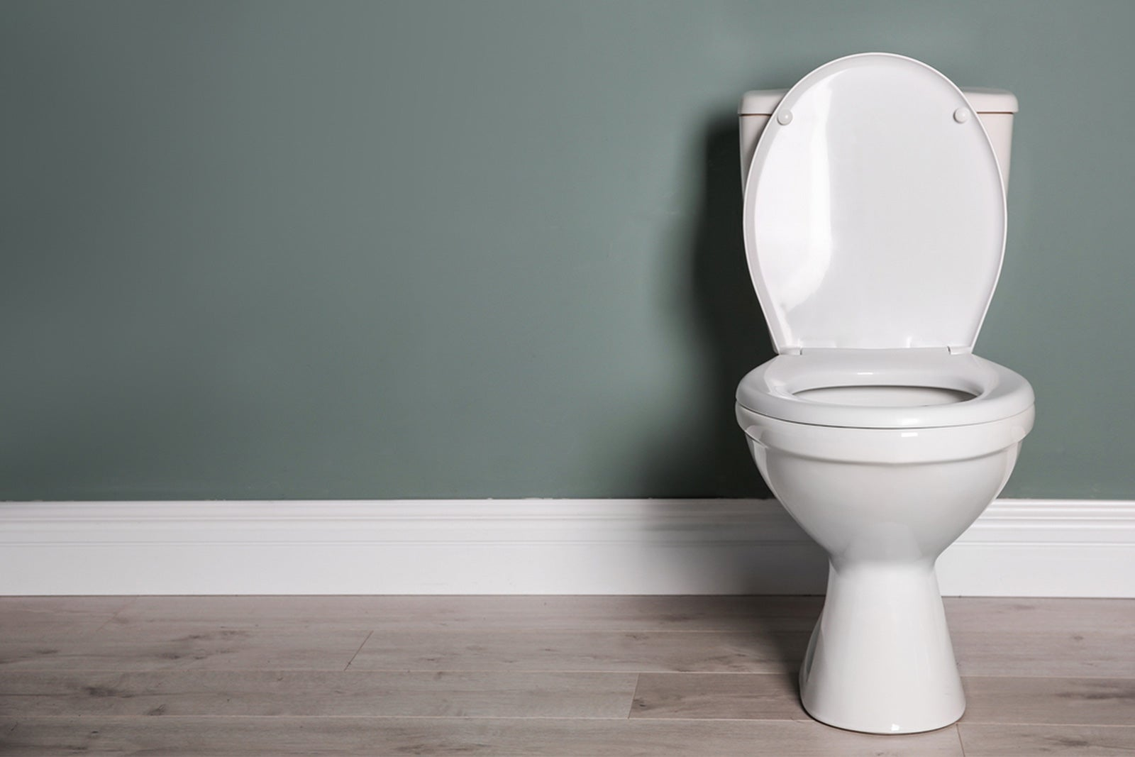 toilet_handle.jpg