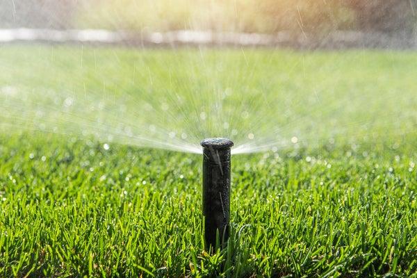 water-lawn-.jpg